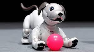 หุ่นยนต์หมา Aibo สัตว์เลี้ยงอนาคต เพื่อผู้สูงอายุ